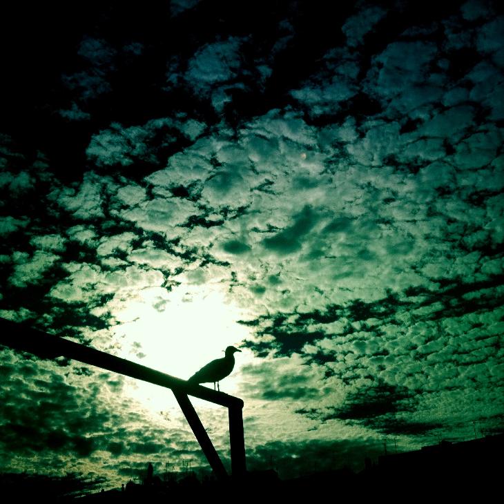 Ciel de Gouelle