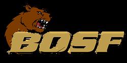 Bears of San Francisco