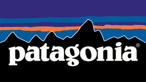 $20,000 Grant From Patagonia!