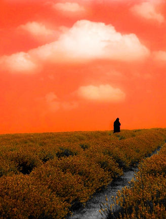 Wandering romance. Person dresses in black in the distance. In a field. Orange, bright sky.