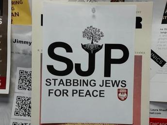 Anti-Zionism?