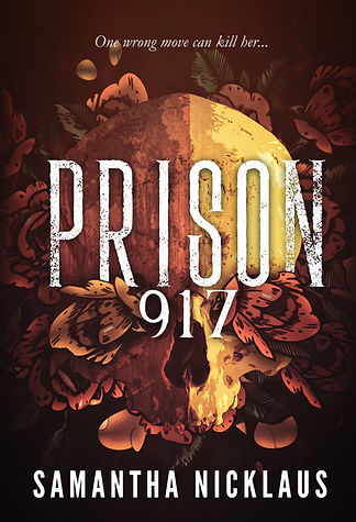 Prison 917 Updated eBook Cover.jpg