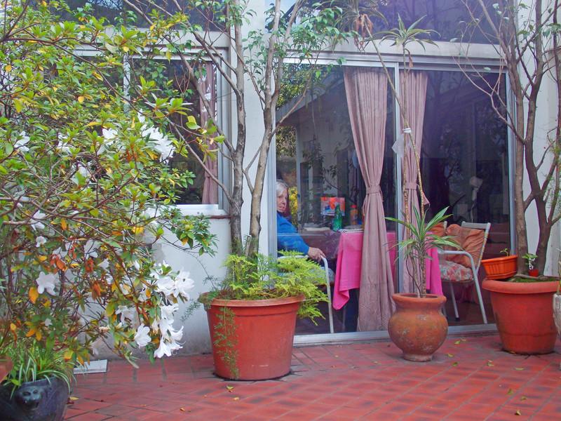 jardin 5.jpg