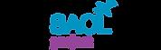 final saol logo new.png