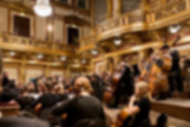 2 Polish Art Philharmonic 080 800.jpg