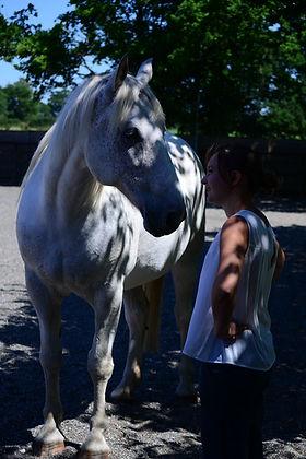 Horses4Change Day 2 042.JPG