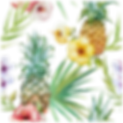 IMGBIN_cuisine-of-hawaii-pineapple-png_S
