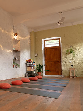 yoga shala with plants and mats right.jp