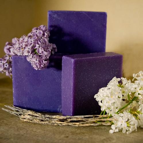 Desert Lilac