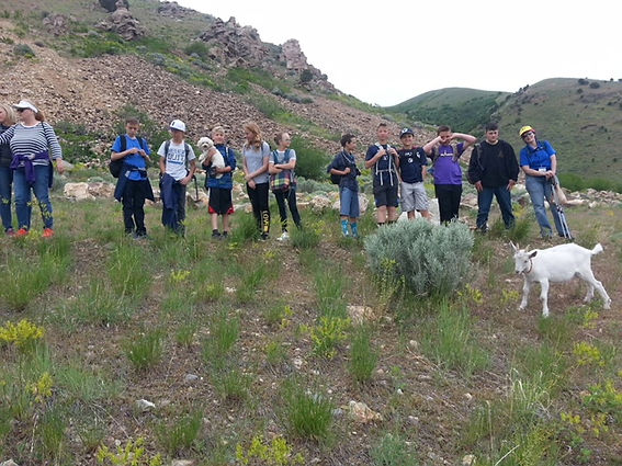 students hiking with pack goat
