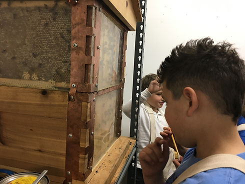 students trying out beekeeper suits