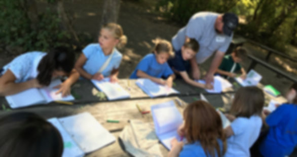 Students studying foilage at Box Elder Campground