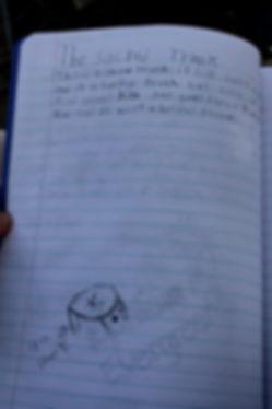 student fieldwork journal