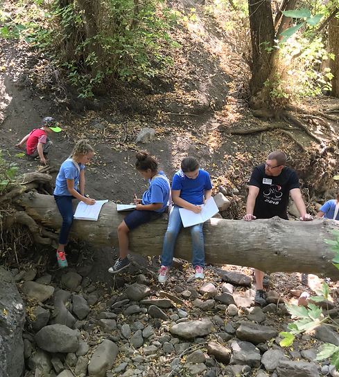 Students studying nature