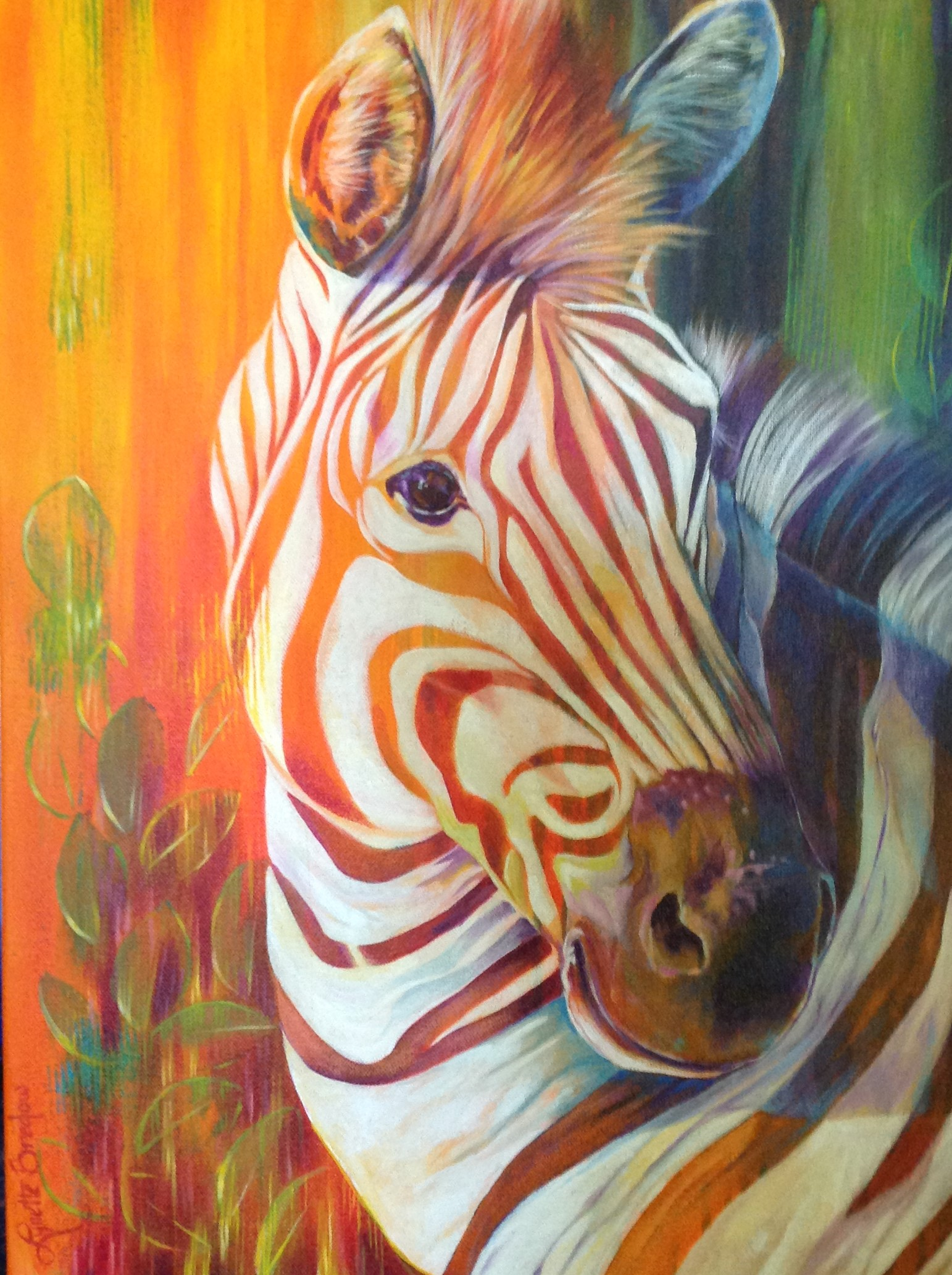 Zebra of Many Colors