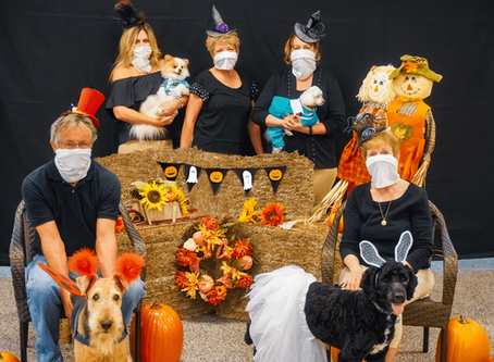 Dogs For Life's Howl-O-Ween Pawrade Set For Oct. 24th, 2020