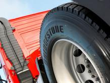 elastika_ trucks.jpg