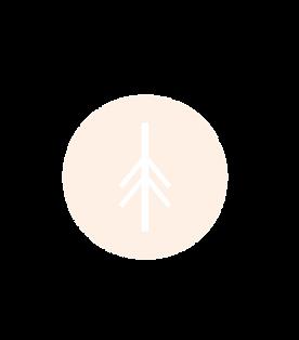 logo_vaalea-02.png