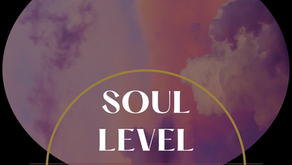INTRODUCING - Soul Level Artists