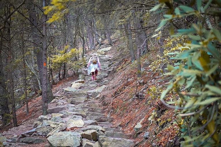 mere hiking steps.jpg