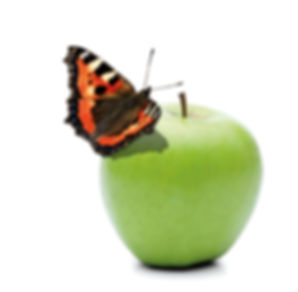 Vegawell Apfel