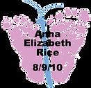 Rice.8.9.10.png