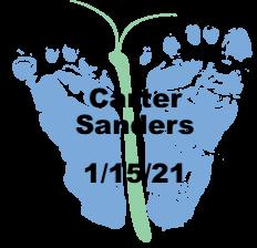 Sanders.1.15.21.png