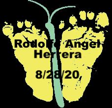 Herrera.8.28.20.png