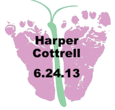 Cottrell.6.24.13.png