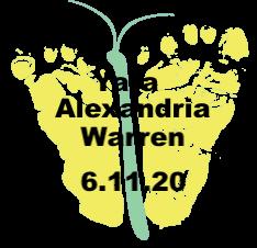 Warren.6.11.20.png