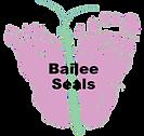 Seals.png
