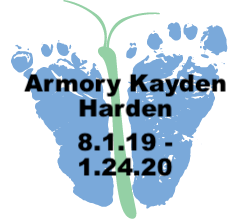 Harden.1.24.20.png
