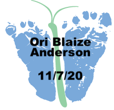 Anderson.11.7.20.png
