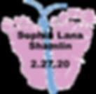 Shamlin.2.27.20.png