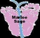 Sage.2020.png