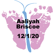 Briscoe.12.1.20.png