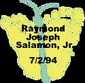 Salamon.7.2.94.png