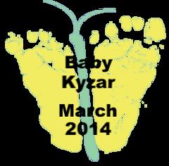 Kyzar.3.14.png