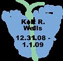 Wells.1.1.09.png