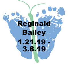 Bailey.3.8.19.png