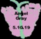 Gray.5.10.19.png