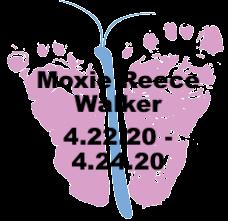 Walker.4.24.20.png