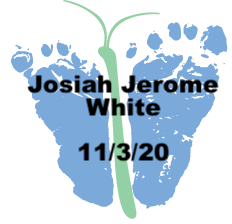 White.11.3.20.png