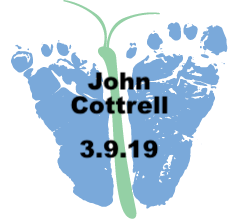 Cottrell.3.9.19.png