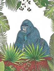 gorilla2.png