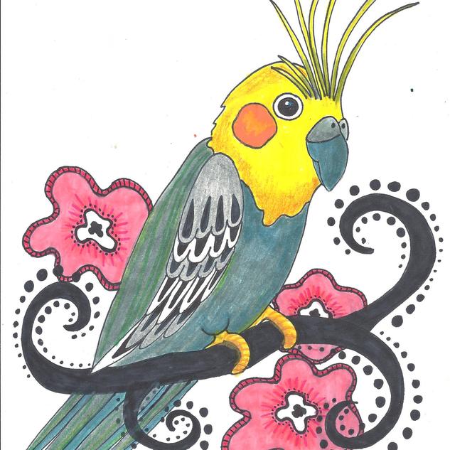 cockatoo1.png