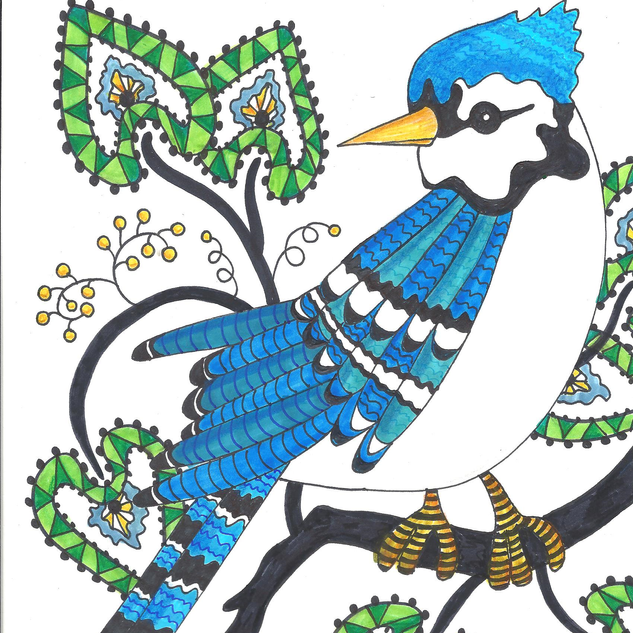bluejay2 (2).png