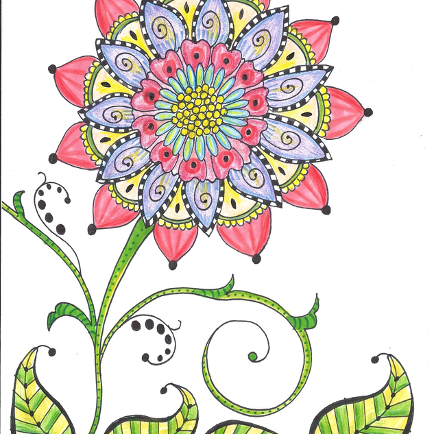 bloom2.png