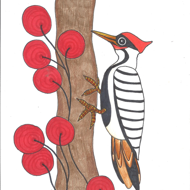 woodpecker2.png