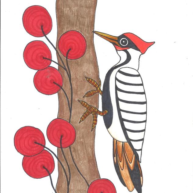 woodpecker2.png